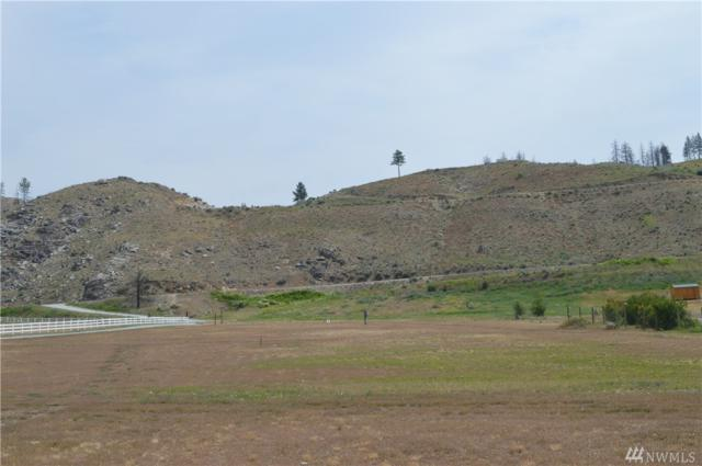 2-Lot Lightning Pine Place, Methow, WA 98834 (#1251199) :: Homes on the Sound