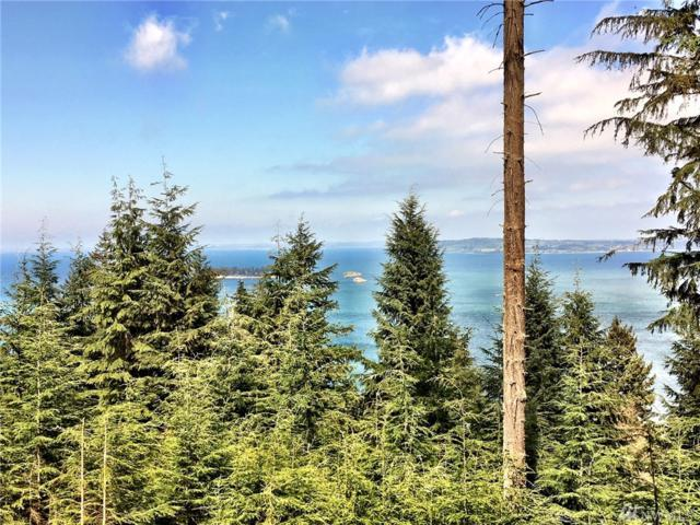 0-XX Raven Lane, Orcas Island, WA 98245 (#1251963) :: Real Estate Solutions Group