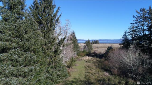 38202 Stackpole Rd, Oysterville, WA 98641 (#1256089) :: Tribeca NW Real Estate
