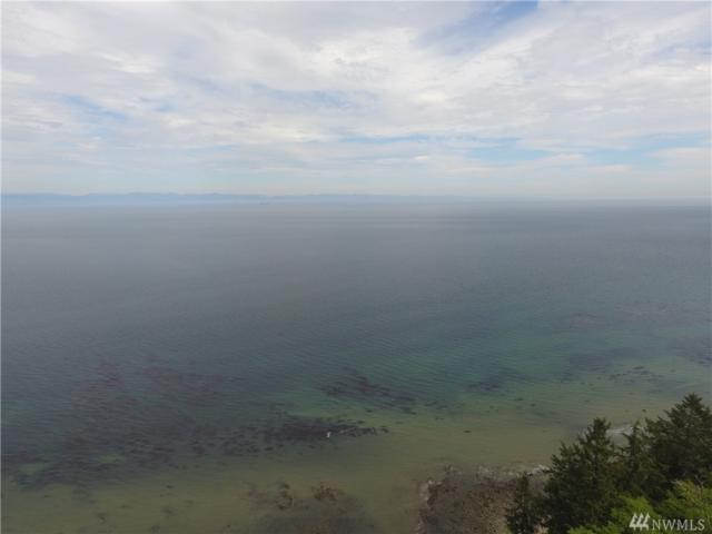0 Shimko Rd, Port Angeles, WA 98383 (#1257281) :: Homes on the Sound