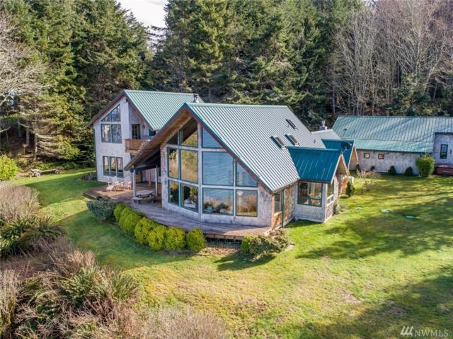 673 Seal Rock Rd, Port Angeles, WA 98363 (#1257395) :: The Home Experience Group Powered by Keller Williams