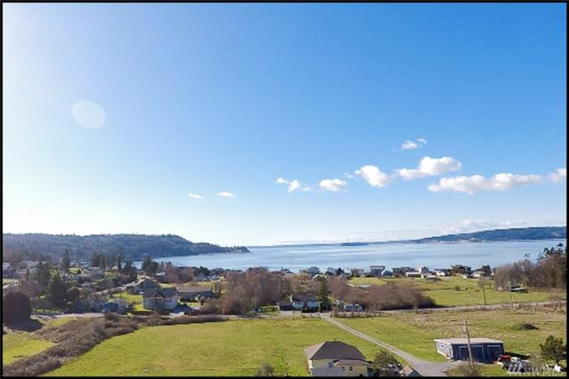 1243 Olsen Rd, Camano Island, WA 98282 (#1258253) :: The Vija Group - Keller Williams Realty