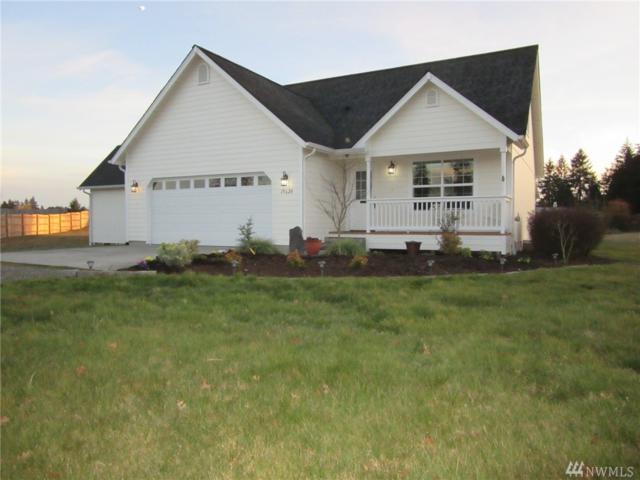 19629 Starlit Lane SW, Rochester, WA 98579 (#1259255) :: Northwest Home Team Realty, LLC