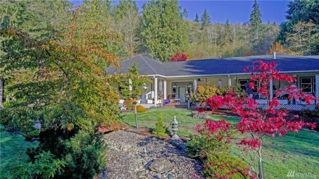 257 Mill Creek Rd, Raymond, WA 98577 (#1259281) :: Canterwood Real Estate Team