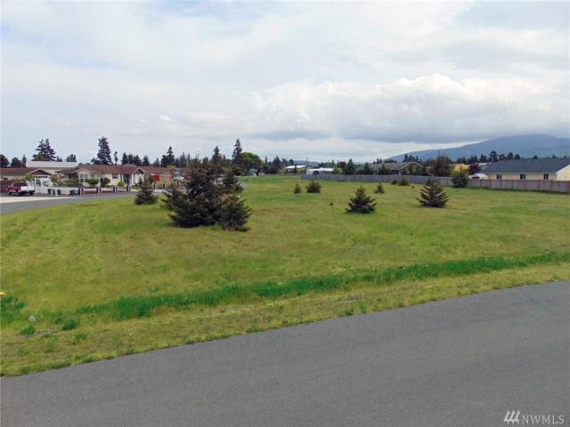 9999 Bolster Wy, Sequim, WA 98382 (#1261065) :: Homes on the Sound