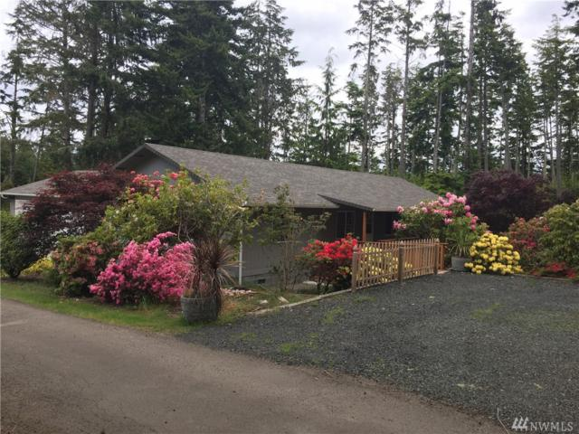 2903 217th St, Ocean Park, WA 98640 (#1261846) :: Real Estate Solutions Group