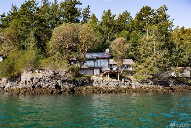 18 Brown Island, San Juan Island, WA 98250 (#1264214) :: Real Estate Solutions Group