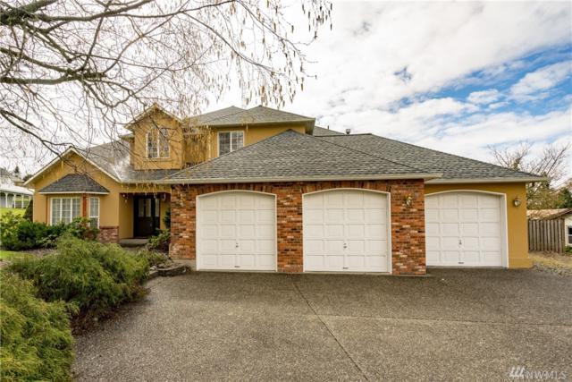 19696 Sky Ridge Rd, Mount Vernon, WA 98274 (#1265920) :: Homes on the Sound
