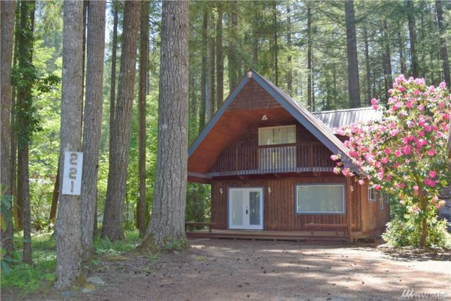 221 Mountain View, Packwood, WA 98361 (#1266834) :: Homes on the Sound