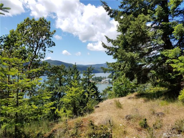 0 Marina Heights Lane, Orcas Island, WA 98245 (#1267105) :: NW Home Experts