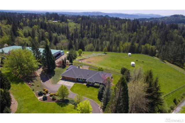 33207 SE 6th St, Washougal, WA 98671 (#1267998) :: Homes on the Sound