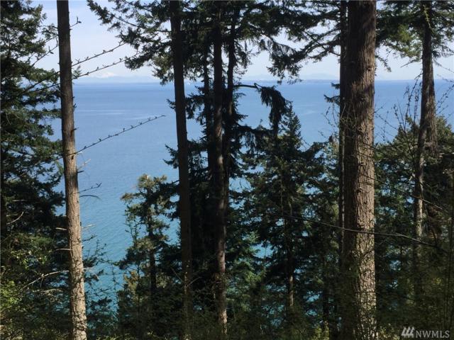 0 Raccoon Point Rd, Orcas Island, WA 98245 (#1268065) :: Carroll & Lions