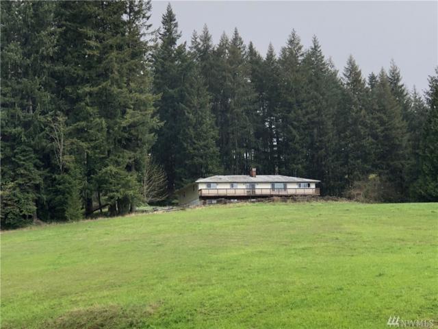515 Spirit Lake Hwy, Castle Rock, WA 98611 (#1271678) :: The Robert Ott Group