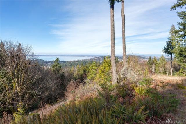 1705 Chuckanut Crest Dr, Bellingham, WA 98229 (#1271813) :: Morris Real Estate Group