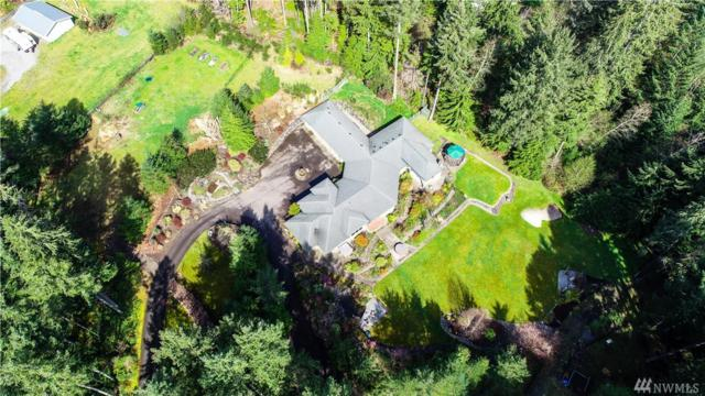 1041 Makah Place, Fox Island, WA 98333 (#1272378) :: Kimberly Gartland Group