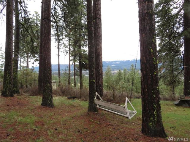280 Powerline Rd, Cle Elum, WA 98922 (#1274080) :: Real Estate Solutions Group