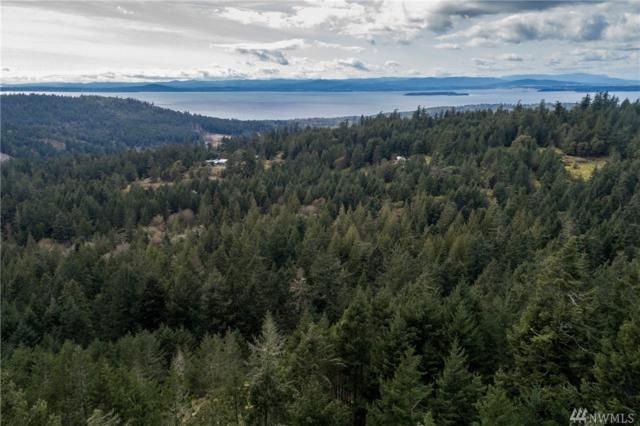 0-xxx Capron Rd, San Juan Island, WA 98250 (#1274359) :: Real Estate Solutions Group