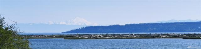 487 Race Road, Coupeville, WA 98239 (#1276919) :: Homes on the Sound