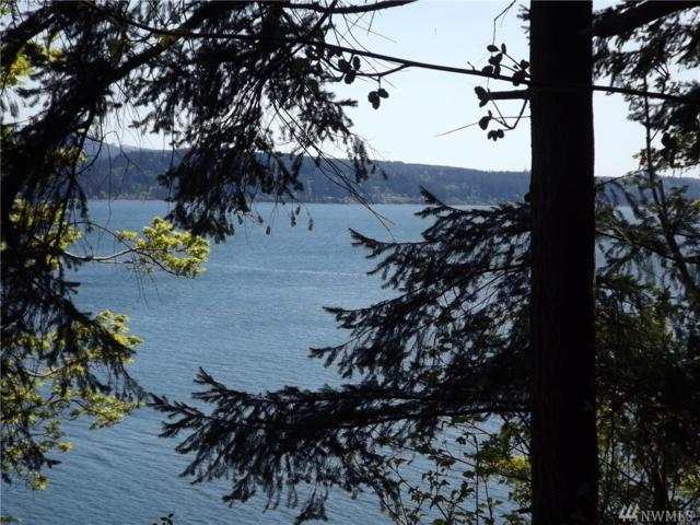 5 Gereaux, Quilcene, WA 98376 (#1278447) :: Homes on the Sound