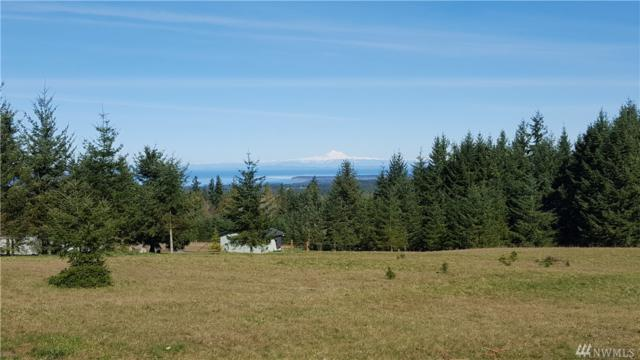 999 Mt Pleasant Rd, Port Angeles, WA 98362 (#1278680) :: Real Estate Solutions Group