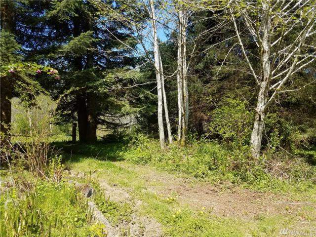 24950 Highway 112, Clallam Bay, WA 98326 (#1279295) :: Homes on the Sound