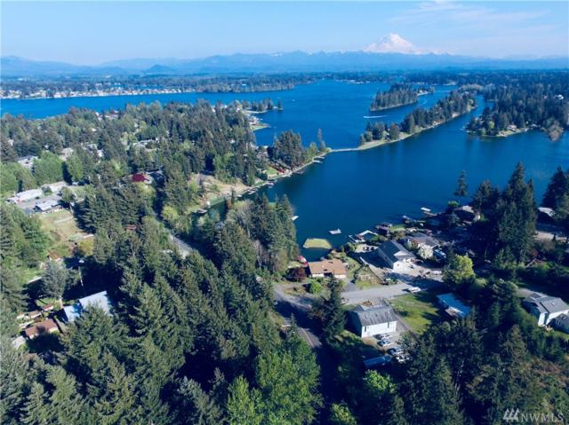 17517 Driftwood Dr E, Lake Tapps, WA 98391 (#1279314) :: Homes on the Sound