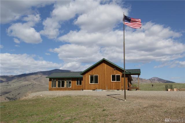 102 Plateau Dr, Twisp, WA 98856 (#1280156) :: Homes on the Sound