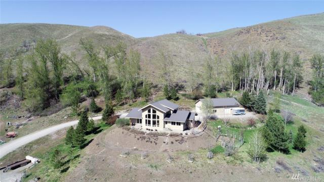 248 Twisp River Rd, Twisp, WA 98856 (#1282083) :: The Home Experience Group Powered by Keller Williams