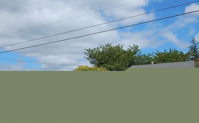 1192 S Spruce St, Burlington, WA 98233 (#1282490) :: Keller Williams Western Realty