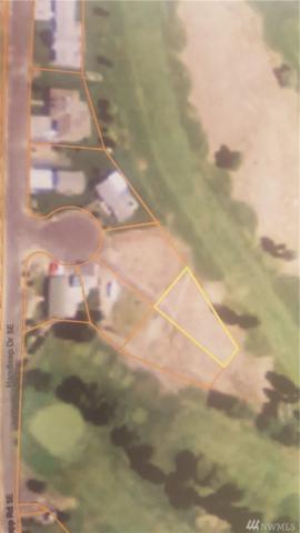 16753 SE Handicap Lane, Warden, WA 98857 (#1283369) :: Morris Real Estate Group