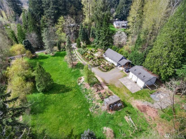 13824 196th Ave NE, Woodinville, WA 98077 (#1285099) :: Homes on the Sound