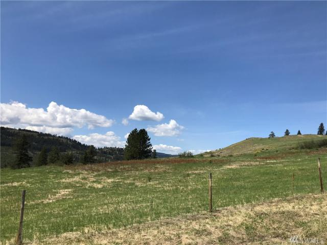 1-XXX S Fork St Peters Cr Rd, Malo, WA 99150 (#1286672) :: Better Homes and Gardens Real Estate McKenzie Group