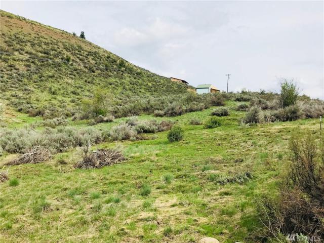 71 Homestead Hills Dr, Twisp, WA 98856 (#1286764) :: Homes on the Sound