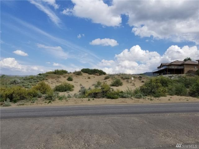 203 Desert Canyon Blvd, Orondo, WA 98843 (#1287437) :: Crutcher Dennis - My Puget Sound Homes