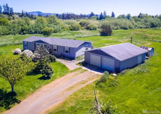 3 Denert Lane, Ilwaco, WA 98624 (#1287540) :: Icon Real Estate Group