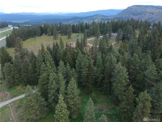 3 Thorp Prairie Rd, Cle Elum, WA 98922 (#1287972) :: Real Estate Solutions Group