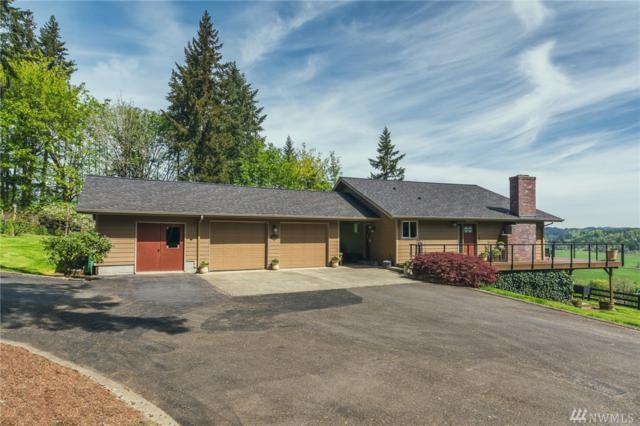 126 Awesome Dr, Adna, WA 98522 (#1288018) :: Chris Cross Real Estate Group
