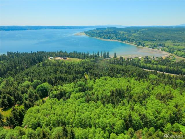 0 Teal Lake Rd, Port Ludlow, WA 98365 (#1291531) :: Homes on the Sound
