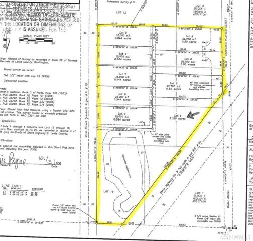 0-0 First St, Pe Ell, WA 98572 (#1293495) :: Homes on the Sound