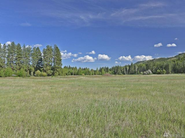 0-LOT 3 Lucky Louie Rd, Winthrop, WA 98862 (#1295475) :: Kimberly Gartland Group