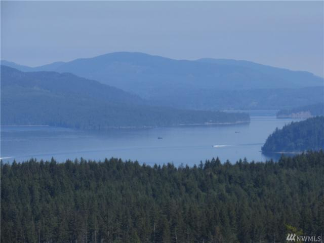20-acres Green Mtn. Rd NW Lot 2, Bremerton, WA 98312 (#1295855) :: Real Estate Solutions Group