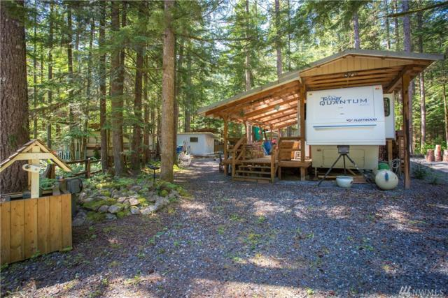 1179 Exit Rd, Sumas, WA 98295 (#1295871) :: Homes on the Sound