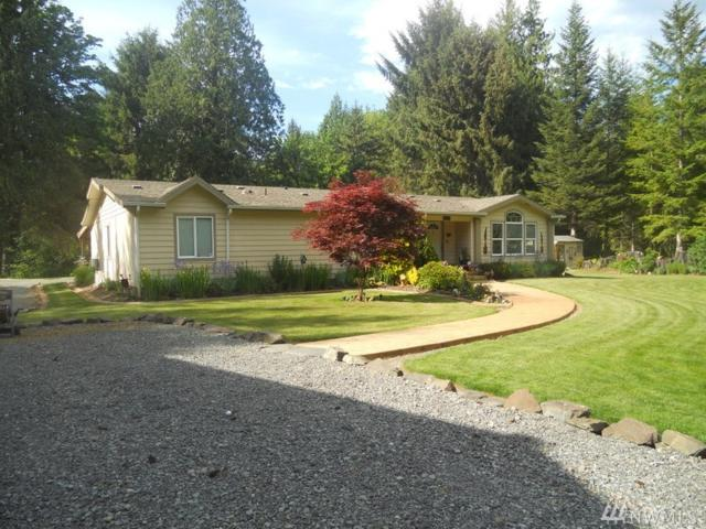 184 Naugle Rd, Mineral, WA 98355 (#1296255) :: Costello Team