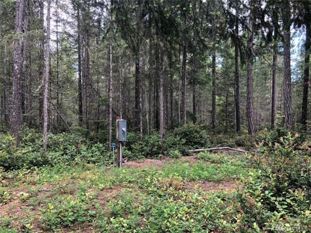 11-XXX E Timber Tides Rd, Union, WA 98592 (#1297059) :: Crutcher Dennis - My Puget Sound Homes