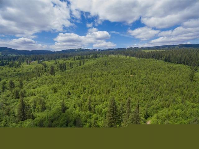 2 Boulder Creek Rd, Camas, WA 98607 (#1297844) :: Morris Real Estate Group