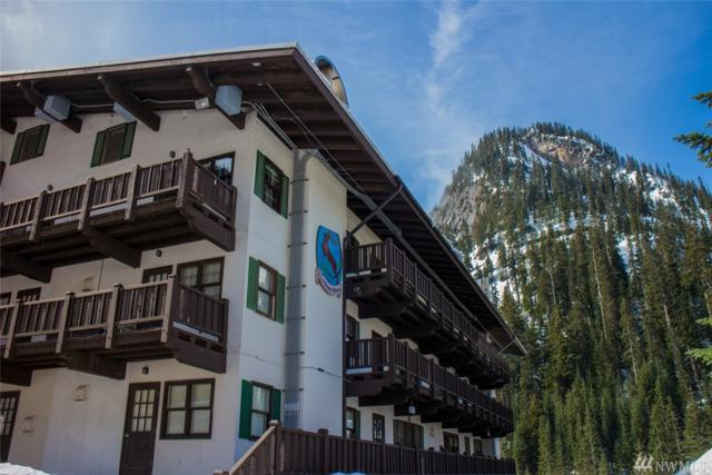 17800 Alpental Access Rd #2107, Snoqualmie Pass, WA 98068 (#1299667) :: Coldwell Banker Kittitas Valley Realty