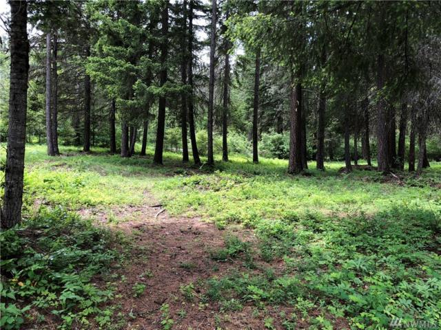 0-Lot 2 Big Horn Wy, Cle Elum, WA 98922 (#1301192) :: Real Estate Solutions Group