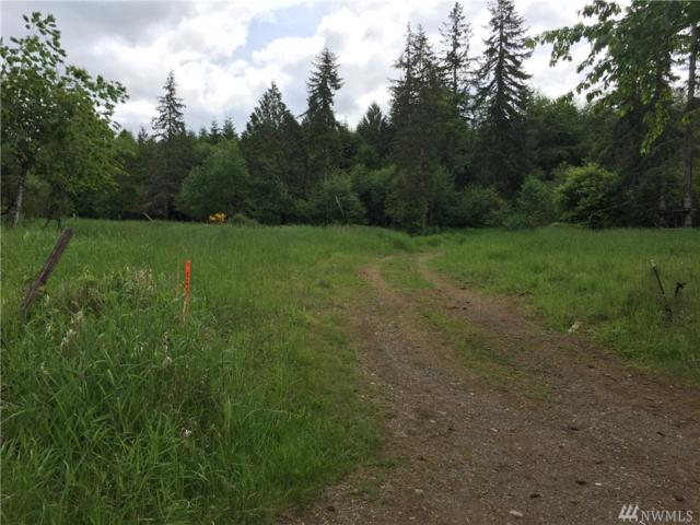 185 Sand Creek Rd, McCleary, WA 98557 (#1301223) :: Real Estate Solutions Group