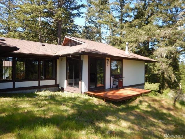 191 Skyview Dr, Friday Harbor, WA 98250 (#1302526) :: Homes on the Sound