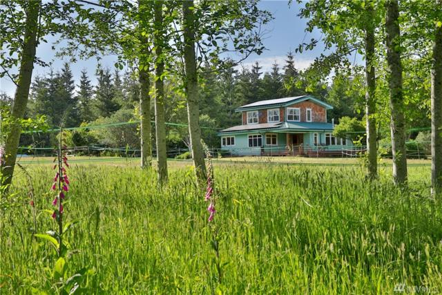 2835 Wild Rose Wy, Langley, WA 98260 (#1304656) :: Keller Williams Realty Greater Seattle